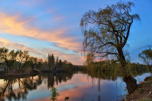 В Харькове предлагают реконструировать популярное место отдыха горожан