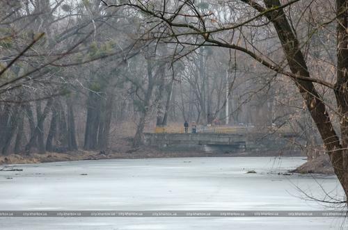 В Харькове оборудуют зону отдыха у озера (фото)