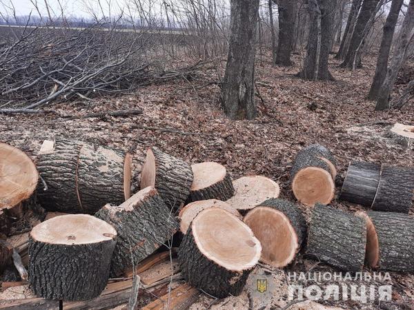 На Харьковщине обнаружили подозрительный грузовик (фото)