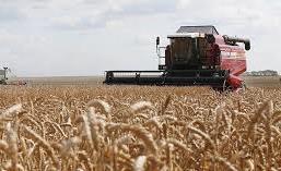 Харьков в XXI веке. 14 апреля – разъяренный фермер поехал комбайном на толпу людей