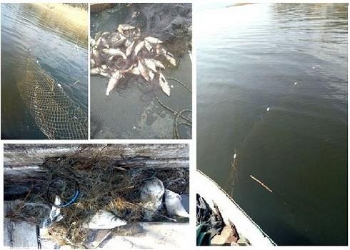 На Харьковщине посреди водоема нашли бесхозное добро