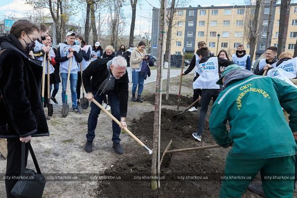 Харьковский сквер украсили экзотическими деревьями (фото)