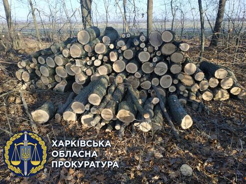 https://gx.net.ua/news_images/1619683837.jpg