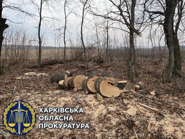 https://gx.net.ua/news_images/1619791123.jpg