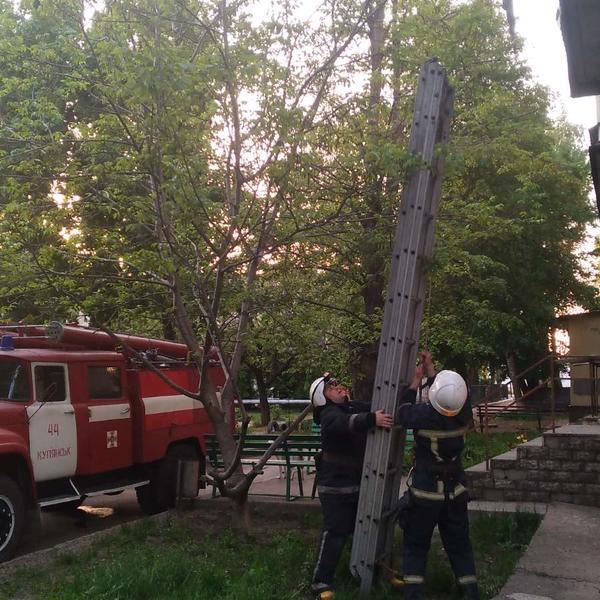 Беспечная хозяйка из Харьковской области едва не накликала в дом беду (фото)
