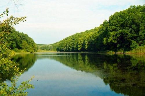В Харьковской области возьмут под охрану большую территорию