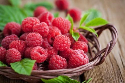 Стартовал сезон малины: в какую цену предлагают ягоду харьковчанам