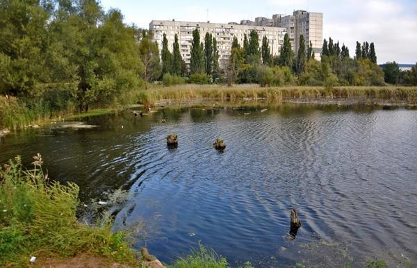 На Харьковском водоеме спасли тонущего больного человека  (видео)