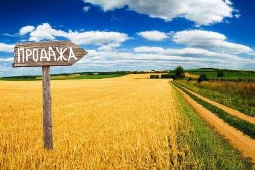 На Харьковщине громады готовятся к земельным аукционам: сколько гектаров можно продать