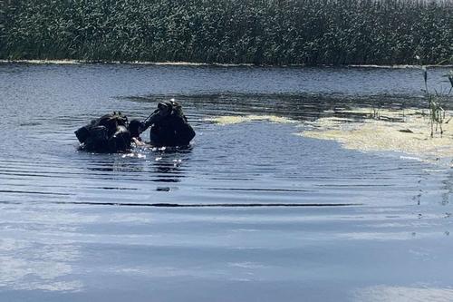 Купальный сезон-2021. Спасатели зафиксировали рекорд по трагедиям на воде