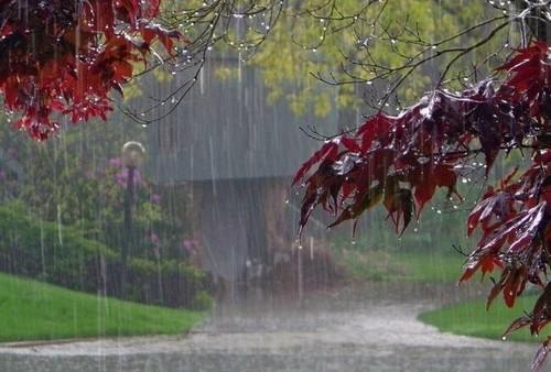 В Харькове готовятся встречать непогоду: что сделано