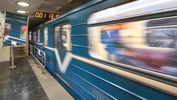 Животные в метро: каких домашних питомцев не пустят в харьковскую подземку
