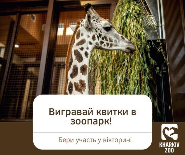https://gx.net.ua/news_images/1629433285.jpg