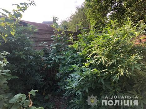 https://gx.net.ua/news_images/1629973459.jpg